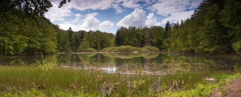 Jeziorko Duszatyńskie